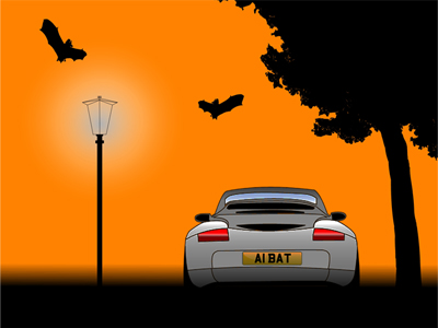 Halloween Number Plates
